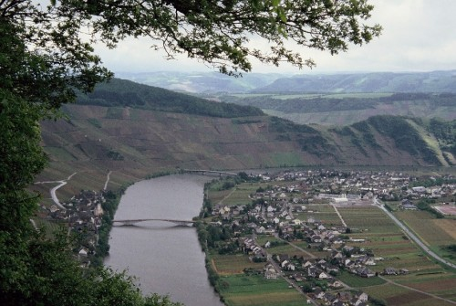moselle005
